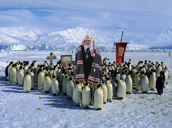 patriarch-kirill-penguins2